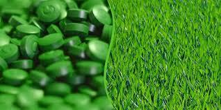 zielone